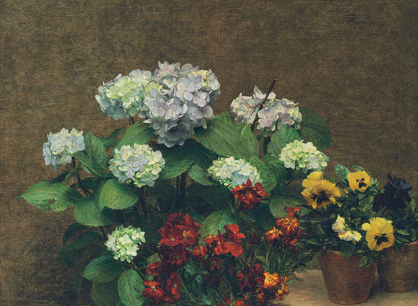 Wall Art - Painting - Flowers  Hydrangea, Wallflowers, Two Pots Of Pansies by Ignace Henri Jean Fantin-Latour