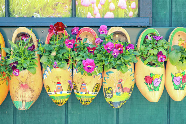 Photograph - Flowers In Dutch Wooden Shoes by Dan Sproul