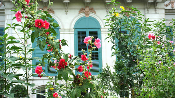 Photograph - Flowers In Front Of The Window by Eva-Maria Di Bella