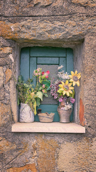 Wall Art - Photograph - Flowers In Lemmen Cinque Terre Italy by Joan Carroll