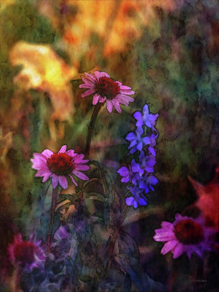 Photograph - Flowers In The Garden 1321 Idp_22 by Steven Ward