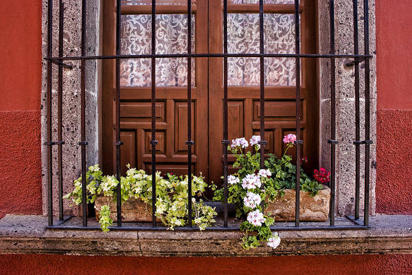 San Miguel De Allende Wall Art - Photograph - Flowers In Window Box San Miguel De Allende by Carol Leigh