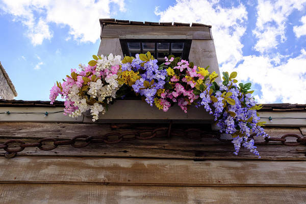 Flowers On A Rooftop Balcony In Saint Augustine Florida Art Print