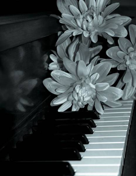 Player Piano Photograph - Flowers On Piano Keys by Dan Sproul