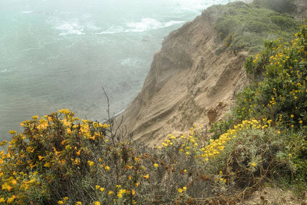 Photograph - Flowers On The Cliff 3 by Peter Dyke