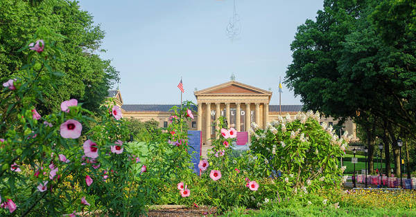Photograph - Flowers On The Parkway - Philadelphia Art Museum by Bill Cannon