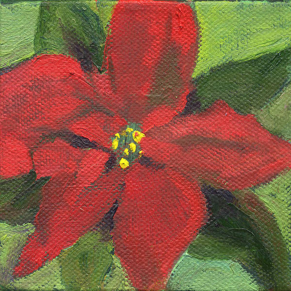 Painting - Flowers Pointsettia by Kathleen Barnes