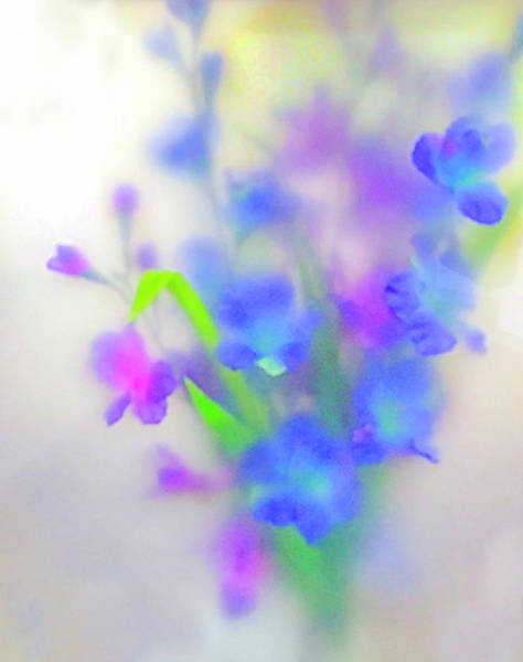 Photograph - Flowers by Rick Mosher