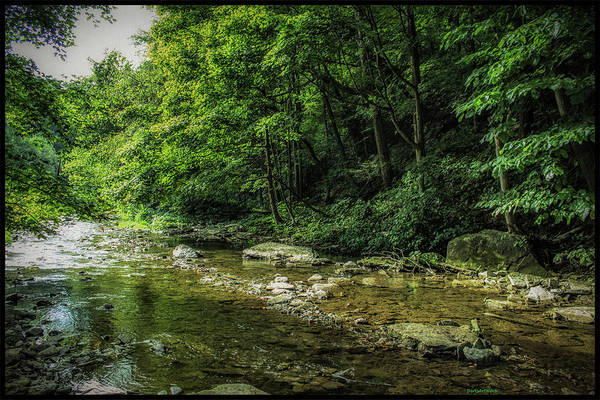 Photograph - Flowing Creek by Roberta Byram