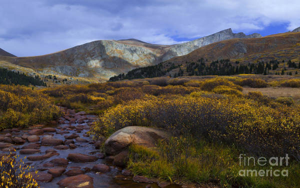Photograph - Flowing From Bierstadt by Barbara Schultheis
