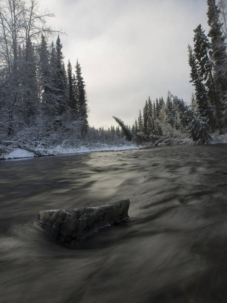 Photograph - Flowing Into Winter by Ian Johnson