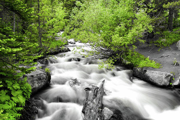 Photograph - Flowing River Nature Art - Two Tone Artwork by Gregory Ballos
