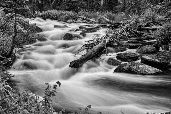 Photograph - Flowing Rocky Mountain Stream In Black And White by James BO Insogna
