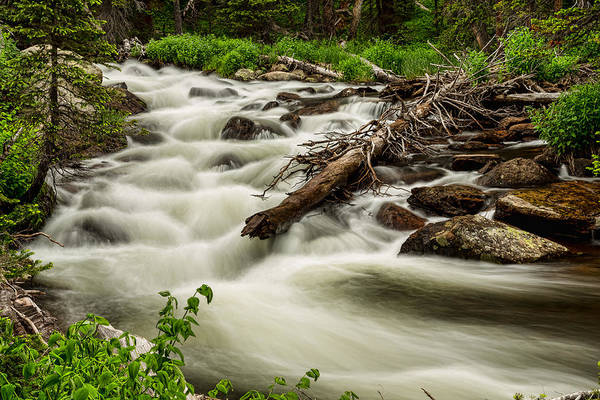 Roosevelt National Forest Photograph - Flowing Rocky Mountain Stream by James BO Insogna