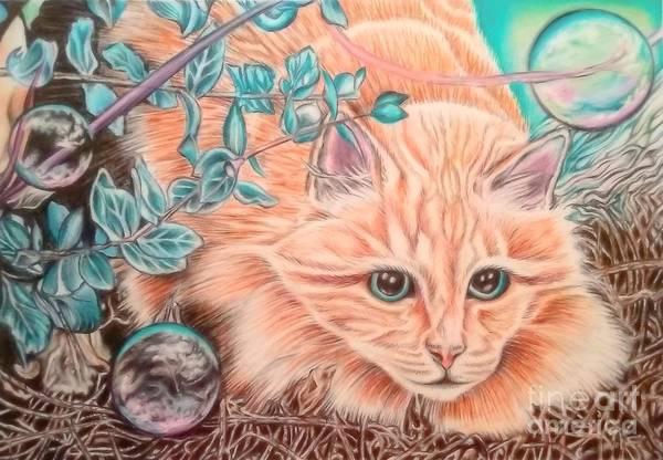 Orange Tabby Drawing - Floyd by Andrea Hayes