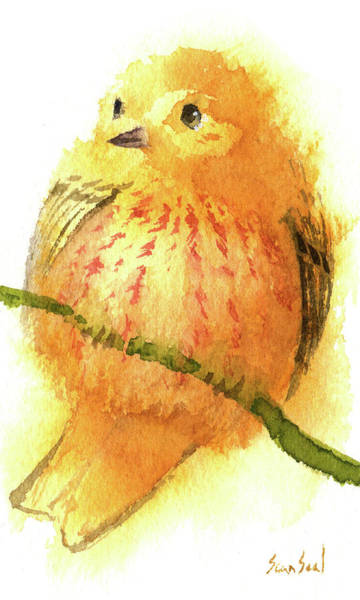 Painting - Fluffy American Yellow Warbler by Sean Seal