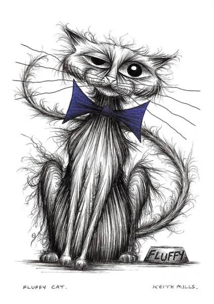 Puss Drawing - Fluffy Cat by Keith Mills