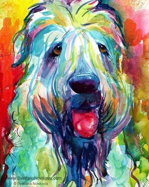 Fluffy Wheaten Terrier Portrait By Art Print