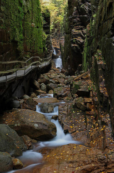 Photograph - Flume Gorge by Juergen Roth