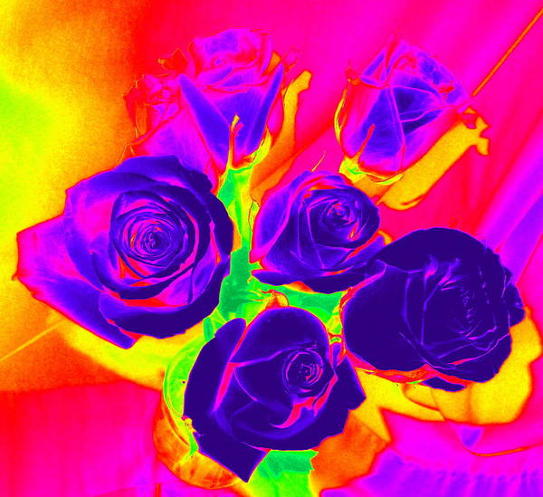 Fluorescent Roses Art Print