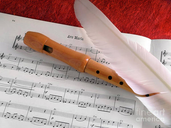Staff Wall Art - Photograph - Flute And Feather by Carlos Caetano