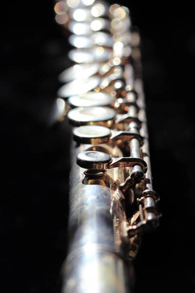 Photograph - Flute by Angela Murdock