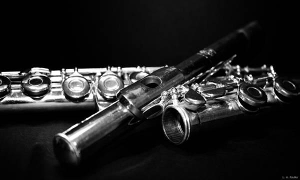 Photograph - Flute Series I by Lauren Radke