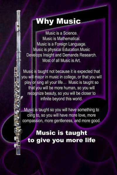 Photograph - Flute Why Music Photographs Or Pictures For T-shirts 4824.02 by M K Miller