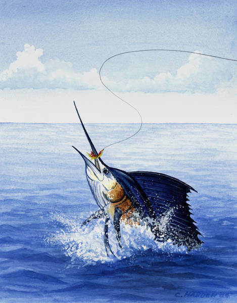 Painting - Fly Fishing For Sailfish by Charles Harden