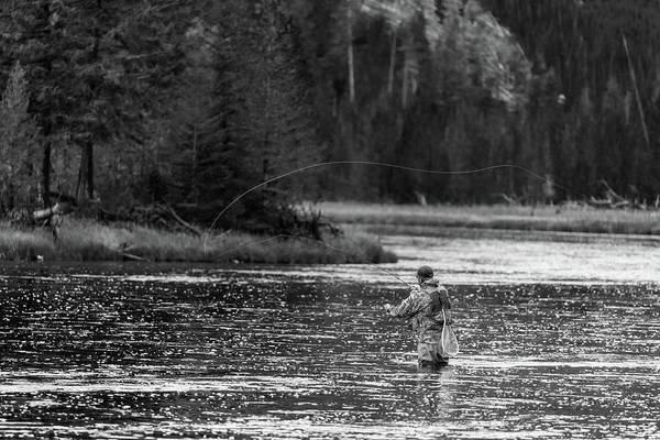 Wall Art - Photograph - Fly Fishing Yellowstone Wy B W by Steve Gadomski
