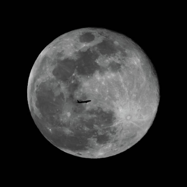 Photograph - Fly Me To The Moon  by Terry DeLuco