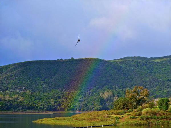 Fly Over The Rainbow Art Print