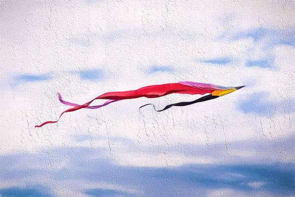 Photograph - Flyin High by Robin Zygelman