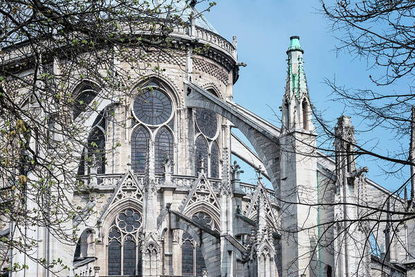 Photograph - Flying Buttresses Notre Dame Paris by Joan Carroll