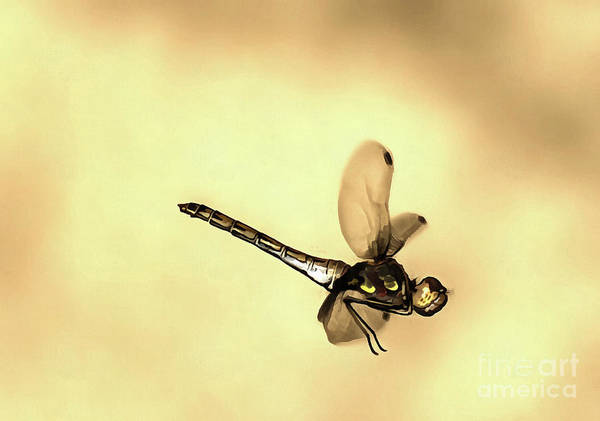 Painting - Flying Dragonfly by Odon Czintos