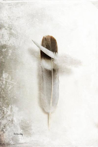 Photograph - Flying Feathers by Randi Grace Nilsberg
