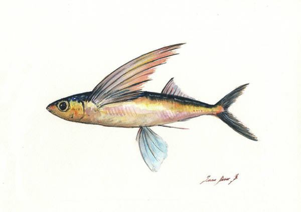 Wall Art - Painting - Flying Fish by Juan Bosco