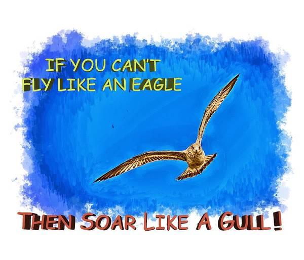 Photograph - Flying Gull by John M Bailey
