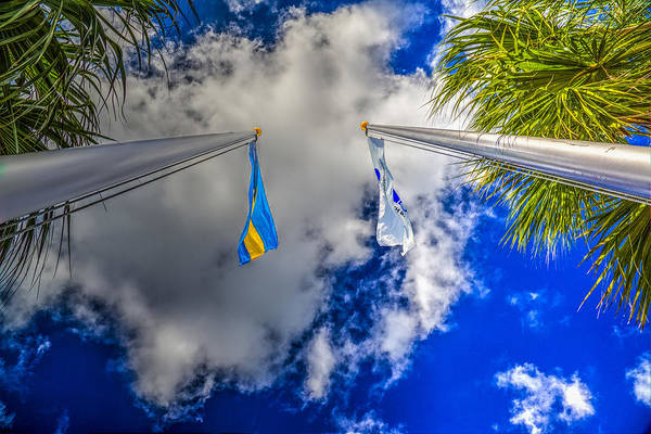 Flying The Flag Wall Art - Photograph - Flying High by Paul Wear