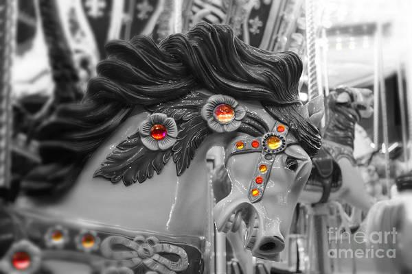 Photograph - Flying Horse by Jenny Revitz Soper