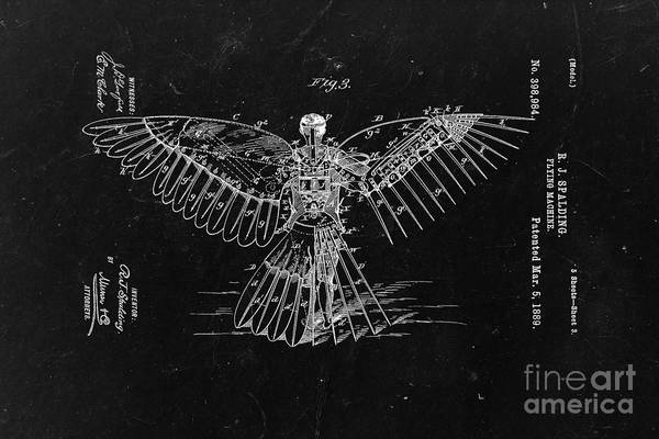 Vintage Plane Photograph - Flying Machine 1889 - Black by Delphimages Photo Creations