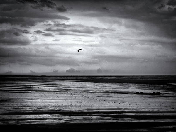 Northumbria Photograph - Flying Over Footprints - Monochrome by Philip Openshaw