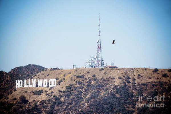 Wall Art - Photograph - Flying Over Hollywood by DAC Photo