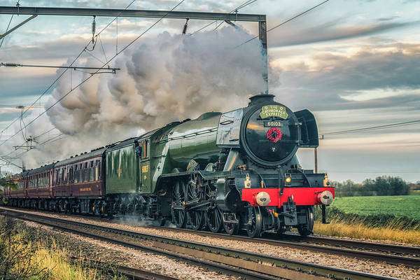 Photograph - Flying Scotsman On The Fen Line by James Billings