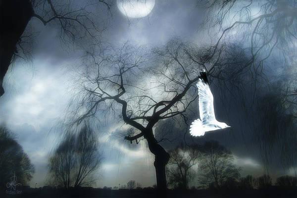 Digital Art - Flying Solo by Pennie McCracken