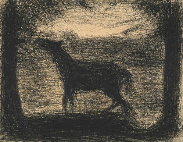 Drawing - Foal by Georges-Pierre Seurat