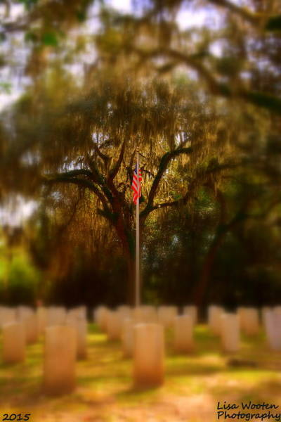 Photograph - Focus On The Flag Vertical by Lisa Wooten