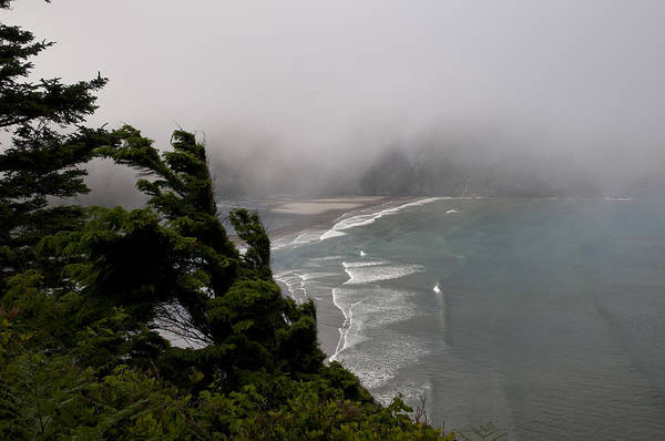 Photograph - Fog And Short Sands Beach by Robert Potts