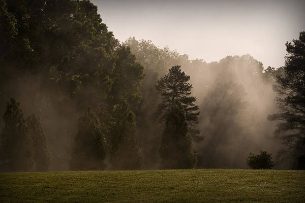Photograph - Fog Dance by Patricia Montgomery