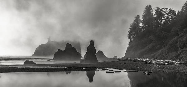 Wall Art - Photograph - Fog In Force by Jon Glaser